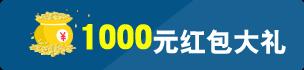 泸定建网站